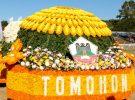 Flowers Festival Tomohon City