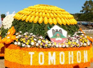Flowers Festival Tomohon City